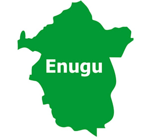 , FG Ecological fund: Neighborhood chief faults Enugu protesters