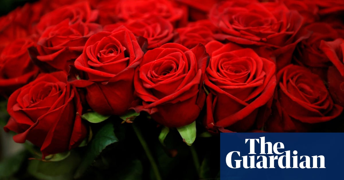 Coming up roses: industry begins to bloom after Australian flower industry hit by pandemic – The Guardian